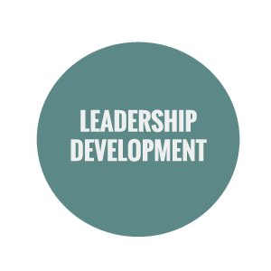 BECLEAR Leadership development